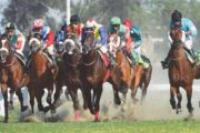 Horse Race in Lahore Postponed Due to Coronavirus