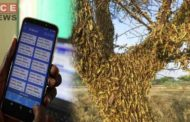 Kenya Uses Mobile App in Battle Against Desert Locusts