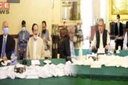 FM Qureshi Briefs APC on HR Violations in IOK Ahead of Youm-e-Istehsal
