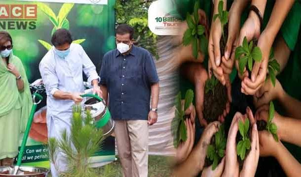 Record Breaking Plantation Drive Launches by PM Imran Khan