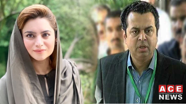 Talal Chaudhry Completely 'Lied' About Party Organizing: PML-N Report