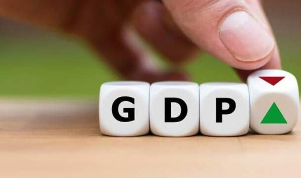 Govt Set GDP Growth Rate at 4.8% for FY 2021-2022