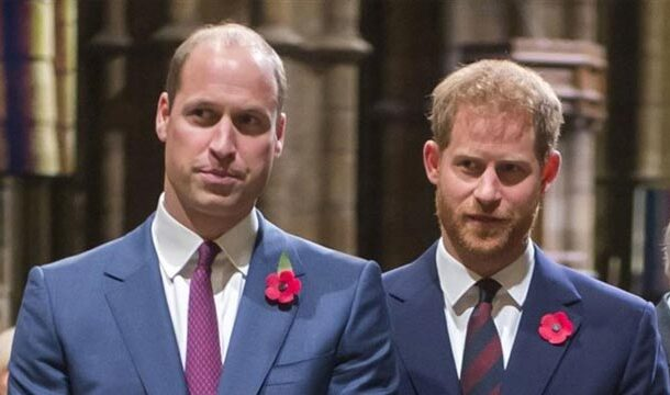 Prince William and Harry will Meet Privately to Calm the Tension