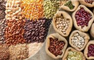 Antimicrobial and Antioxidant Properties of Wild Plants Seed Extracts
